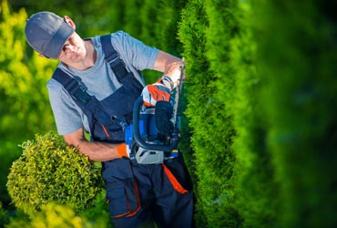 Fairfield County Landscaping, Inc. shrub trimming